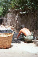 Jpeg 49K One of the dyers spreading out to dry the charcoal which is a bi-product of the dyeing process - Amarapura, Shan State 9809f17.jpg