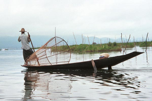 Jpeg 39K 9809Q09 Intha fisherman leg-rowing on Lake Inle, Shan State.