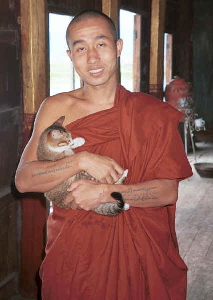 Jpeg 23K A monk with one of his jumping cats at Nga Phe Kyaung monastery, Lake Inle, Shan State, Myanmar 9809Q14A.jpg