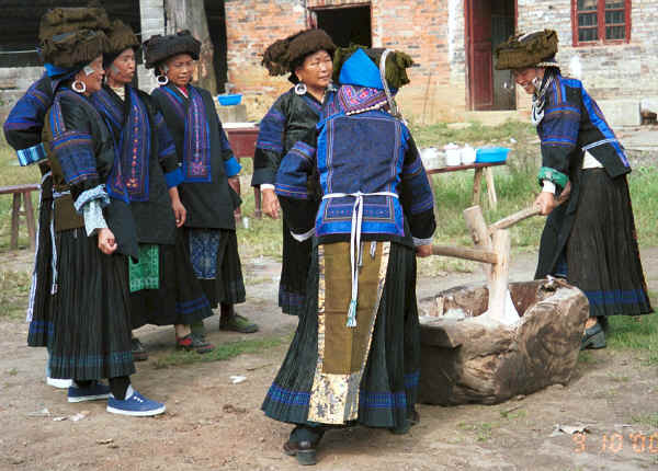 Black Miao women kneading stick rice served for festivals.  Note the young women with their heavy earings held by braid and the older women wearing them in pierced earlobes.  The gentian violet dyed back apron and the small insets of gentian dyed silk satin around the embroidered back panel of the jacket are clearly visible.  Zuo Qi village, Min Gu township, Zhenfeng county, Guizhou province 0010q04.jpg