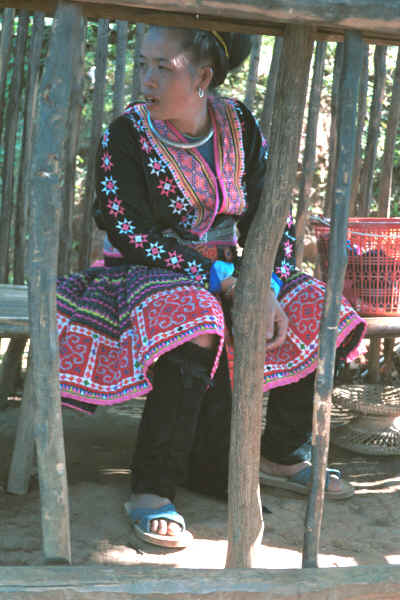 Blue Hmong woman dressed in all her finery in a village on Doi Suthep above Chiang Mai 8812l05