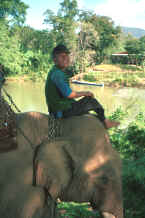 to Jpeg 35K Karen mahout taking a rest on his elephant near Mae Hong Son, northern Thailand 8812j31.jpg