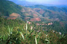 to Jpeg 39 K Looking down onto a Mien (Yao) village in the hills around Chiang Rai in Northern Thailand 8812q01