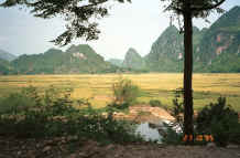 to Jpeg 35K Down in the valley on the road from near to Son La heading towards to Dien Bien Phu in Son La Province 9510C16.JPG