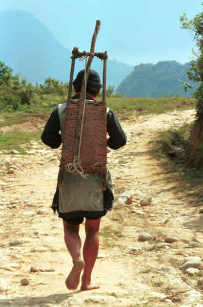 Jpeg 31K Black Hmong man in the hills around Sa Pa, Lao Cai Province returning home from the rice harvest with a rice thresher on his back 9510K18E.JPG