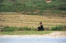 to Jpeg 41K Black Hmong boy resting at the side of the road after threshing the rice in the fields in the hills around Sa Pa, Lao Cai Province 9510K22.JPG
