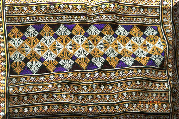 Close-up of the embroidery on the bottom of the back panel of a Dzao woman's coat 9510j33.jpg