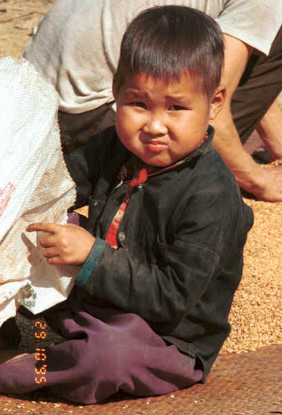 Green Hmong boy sitting with the rice as it dries in a village in Lai Chau province, northern Vietnam 9510g05.jpg (400327 bytes)