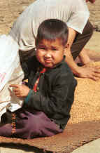 to Jpeg 29K Green Hmong boy sitting with the rice as it dries in a village in Lai Chau province, northern Vietnam 9510g05.jpg (428511 bytes)