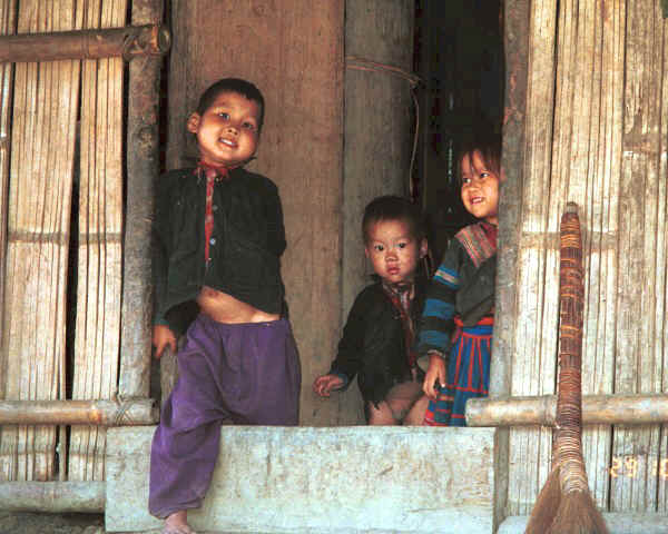 Green Hmong children looking out of a house in a village in Lai Chau province, northern Vietnam 9510g09AE.jpg